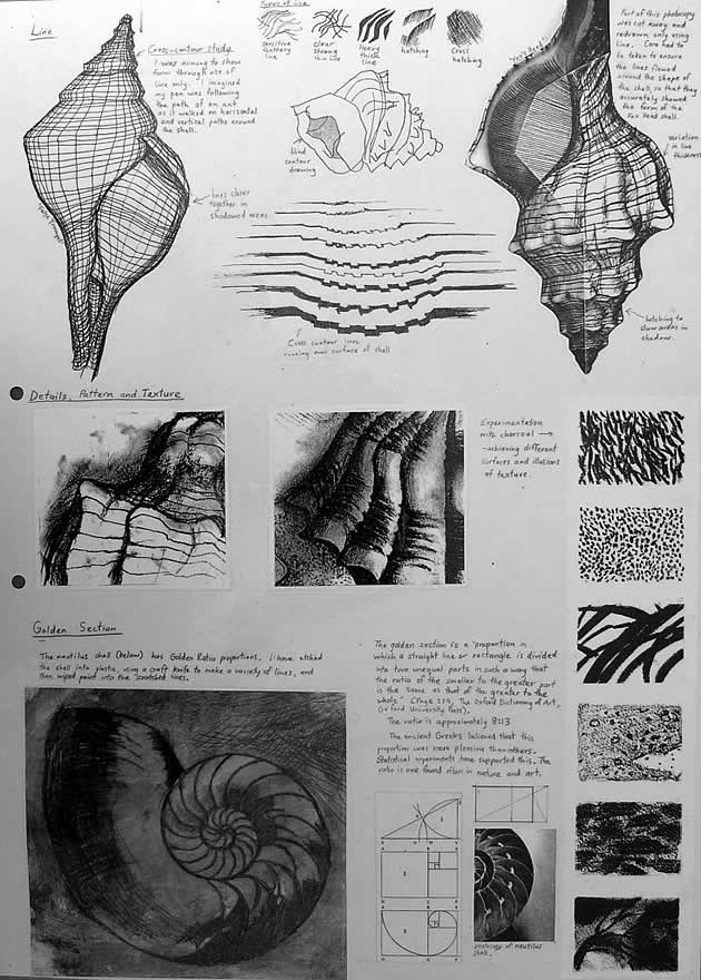 line and texture ideas for a GCSE art project