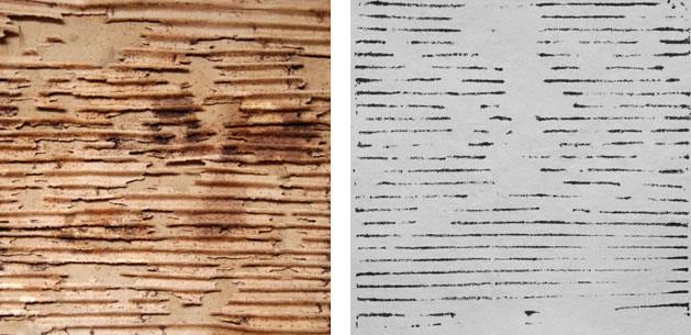 corrugated cardboard print