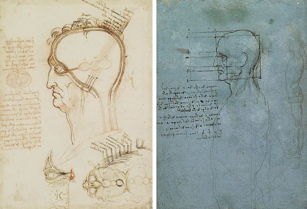 Contour Line Drawing Leonardo Da Vinci : Line drawing a guide for art students