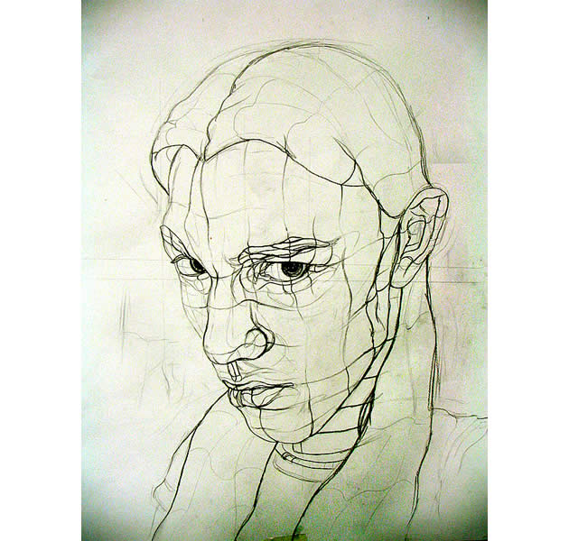 Cross contour line drawing by Aaron Earley