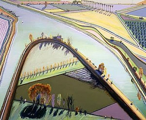 aerial landscape by wayne thiebaud