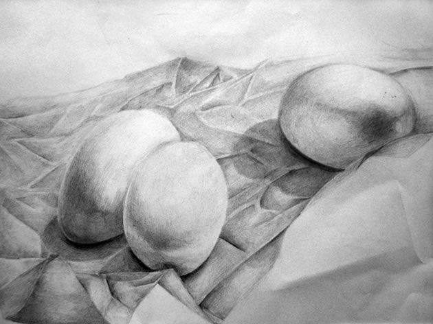 drawing of eggs