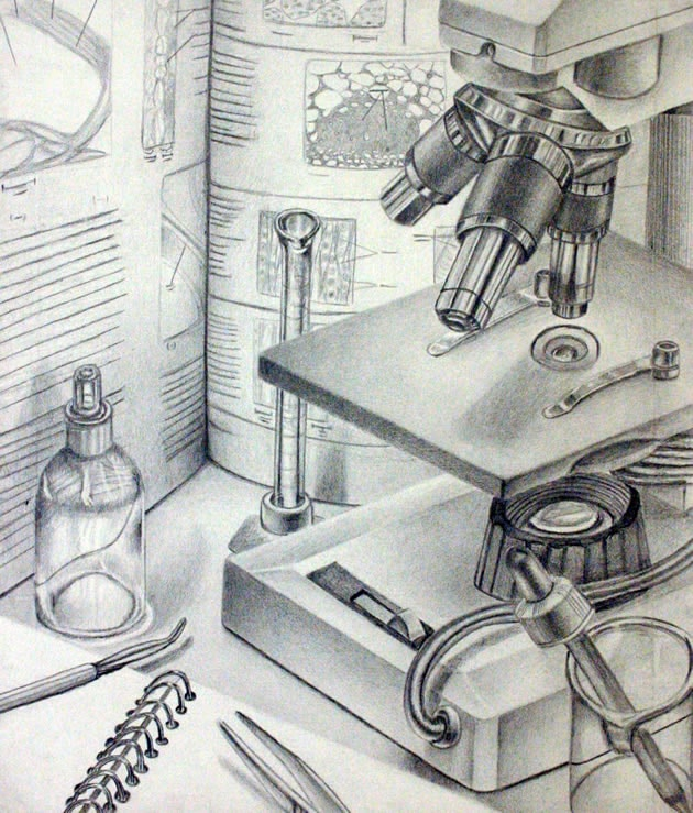 microscope still life drawing