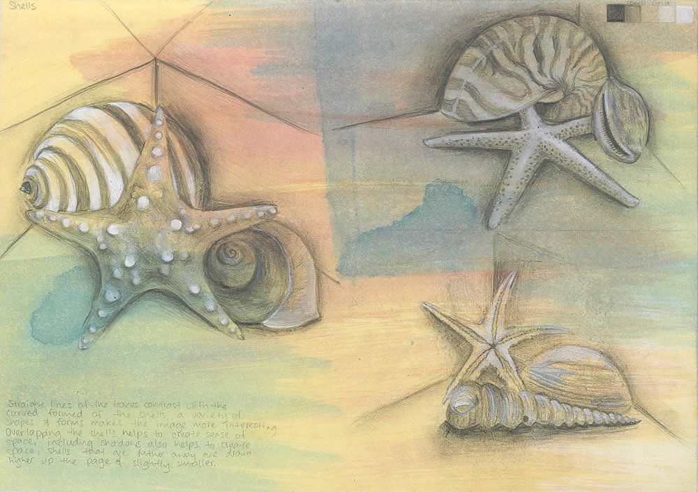 GCSE art sketchbook shells