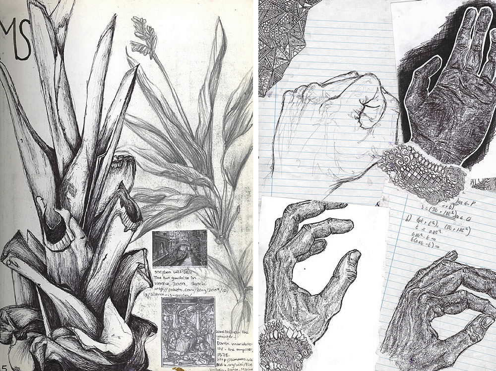 plants and hands: sketchbook