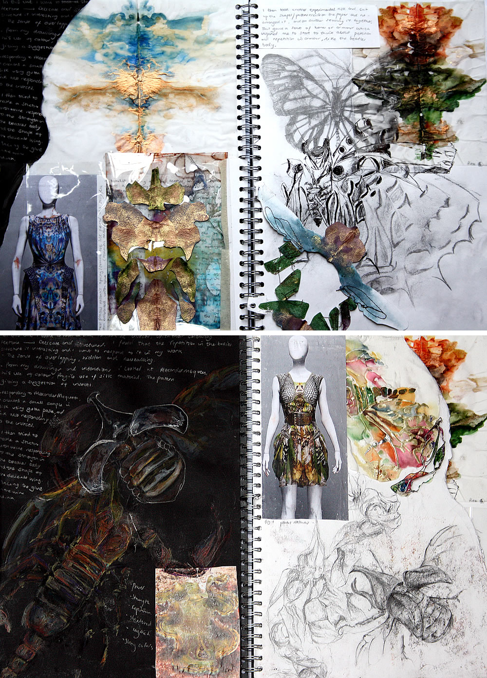 Insect fashion design project