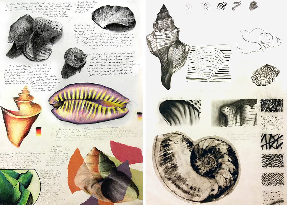 International GCSE shell drawings
