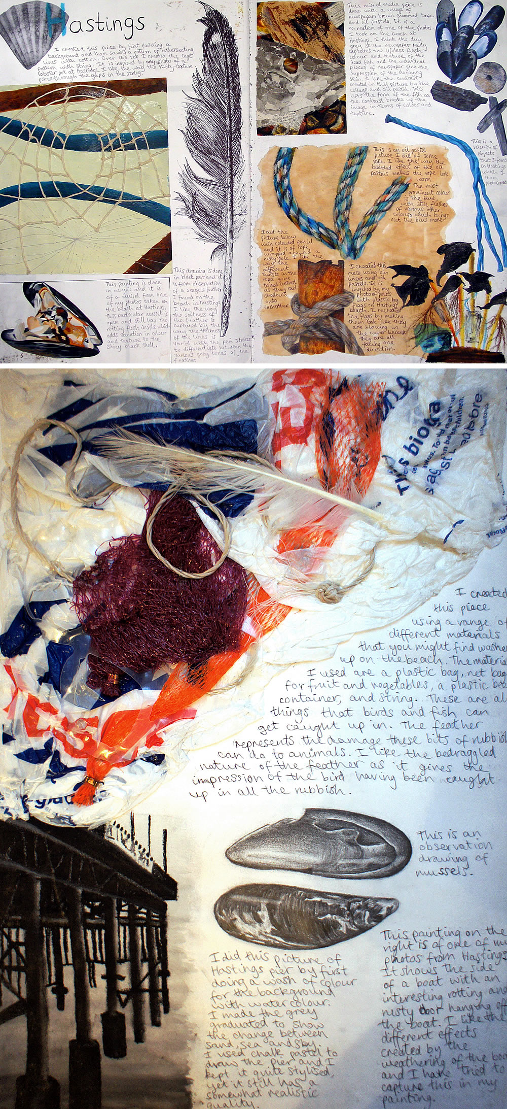 Coastal environment and shells: A Level Sketchbook
