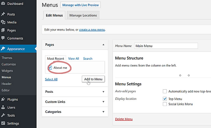 Adding links to your WordPress menu