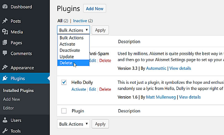 Deleting WordPress plugins