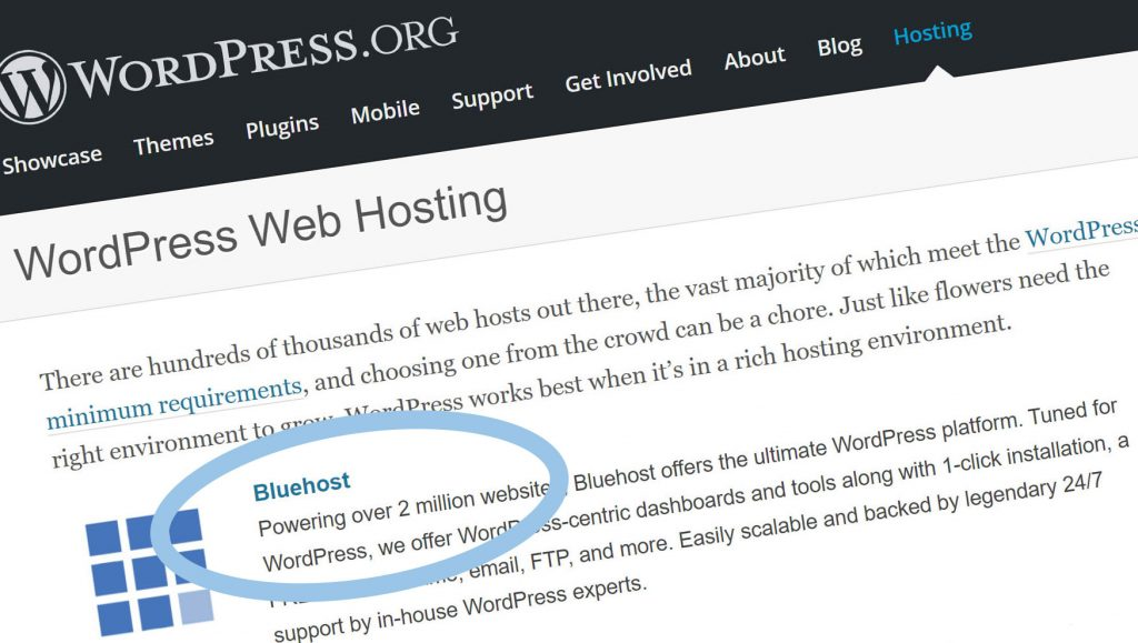 Wordpress hosting for artists