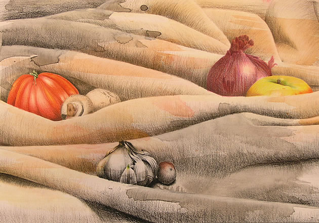 coloured pencil on acrylic wash - fruit still life