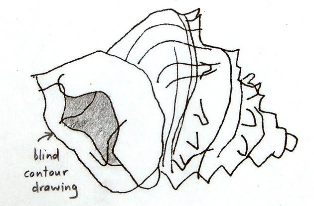 Blind Contour Line Drawing Face : Line drawing a guide for art students
