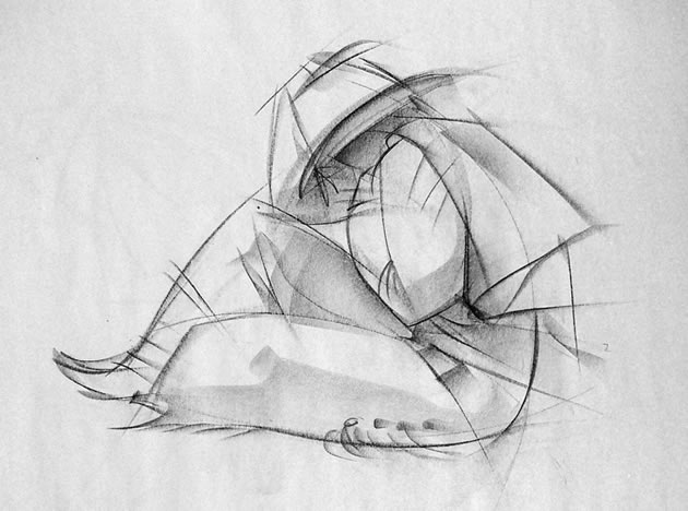 Line Drawing Artist Research : Line drawing a guide for art students