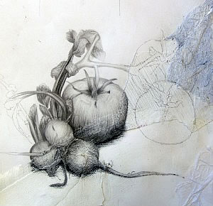 graphite drawing of fruit still life
