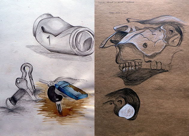 igcse art and design - sketchbook pages