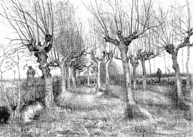 vincent van gogh perspective drawing