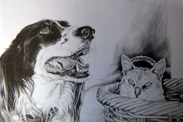 Observational graphite drawings of a dog and cat