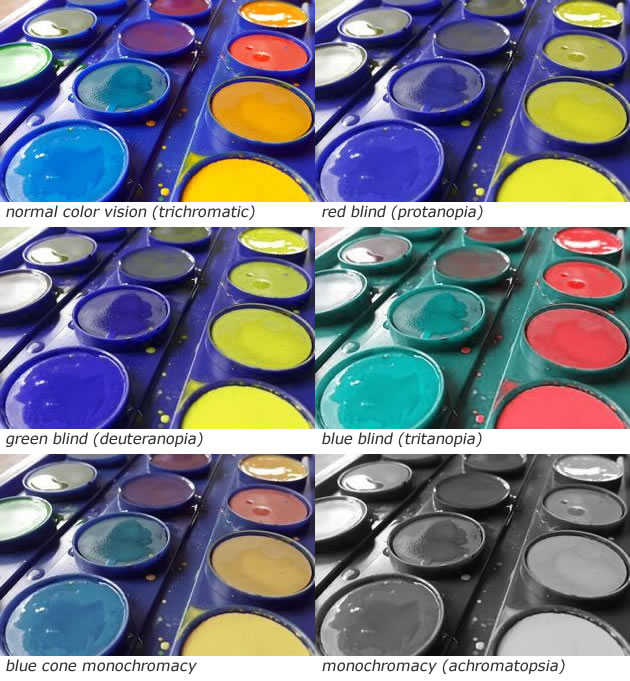 The challenges of mixing paint when color blind